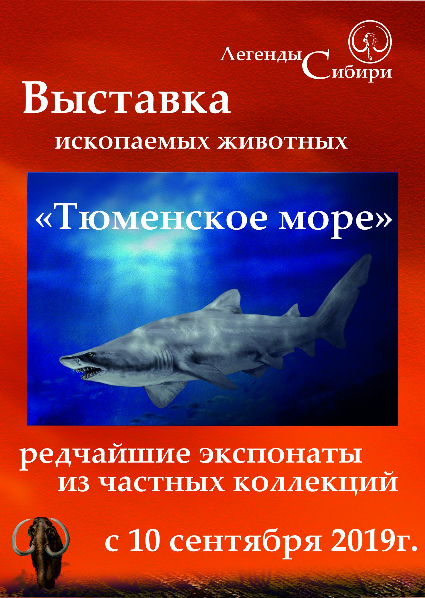 Легенды Сибири, тюменское море, выставка, выставки в тюмени, что подарить, магазин сувениров, магазин подарков, зубы акул