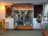 магазин подарков, галерея, музей, легенды сибири, сувениры в тюмени, купить сувенир, купить подарок, магазин на Володарского