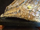 Рептилия, зуб мамонта